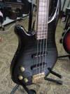 Bass02