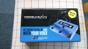 Voice_live_play_2